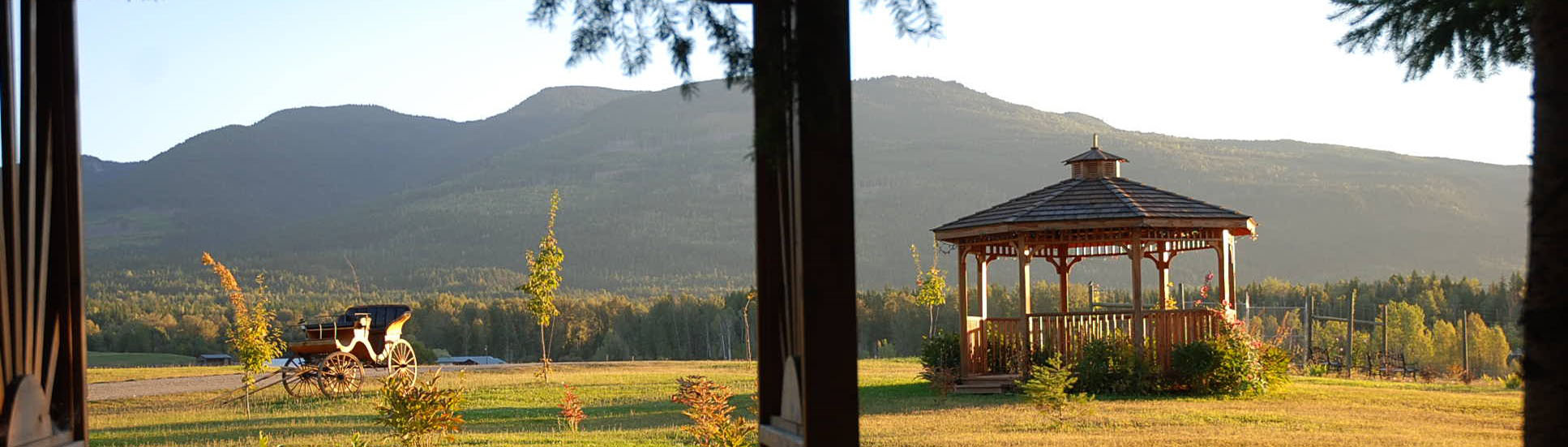 view of a carriage near a gazebo, late afternoon